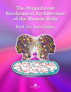 The Magnificent Biochemical Architecture Of The Human Body YENİ resmi
